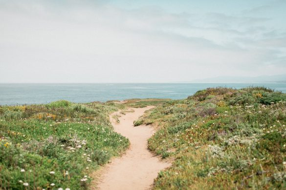 welcoming 2021 with sand path winding between grassy bluffs towards a ocean skyline